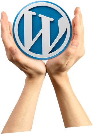 Wordpress Development & Maintenance