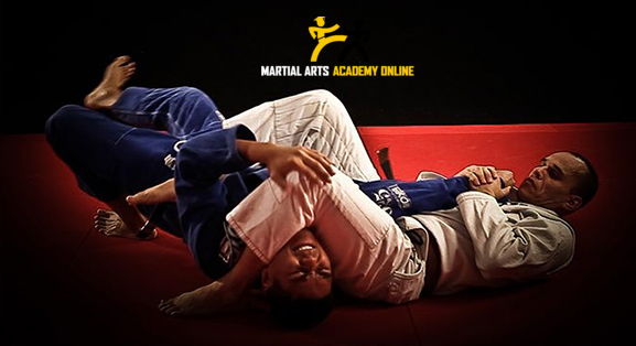 Custom WordPress Plugin for Martial Arts Academy