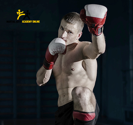Martial Arts Academy Work Portfolio